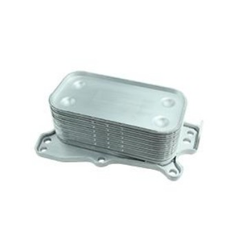 ANGLEWIDE Engine Oil Cooler 2721880001 Fit for 2006-2012 Mercedes-Benz C350 2006-2007 Mercedes-Benz C230