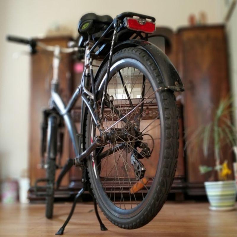Double Leg Bike Kickstand Foldable Mount Bicycle Stand for Bicycle MTB Road Bike