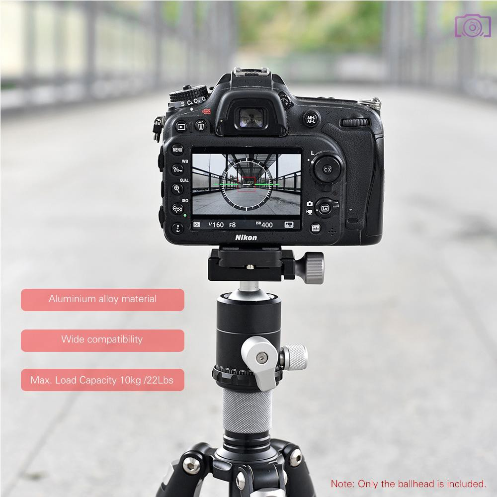 Fotga Metal 360 Degree Swivel Camera Tripod Ball Head Ballhead with 1//4 Screw Quick Release Plate for DSLR Camera Camcoder Video