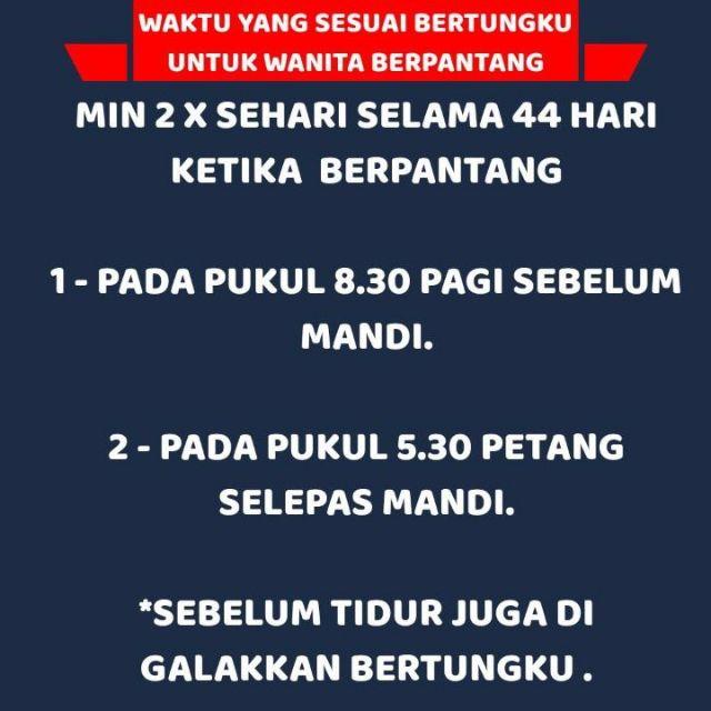 [🎁FREEGIFT] TUNGKU HERBA ELEKTRIK - Tungku Elektrik | Tungku Herba | MAHTHIKA