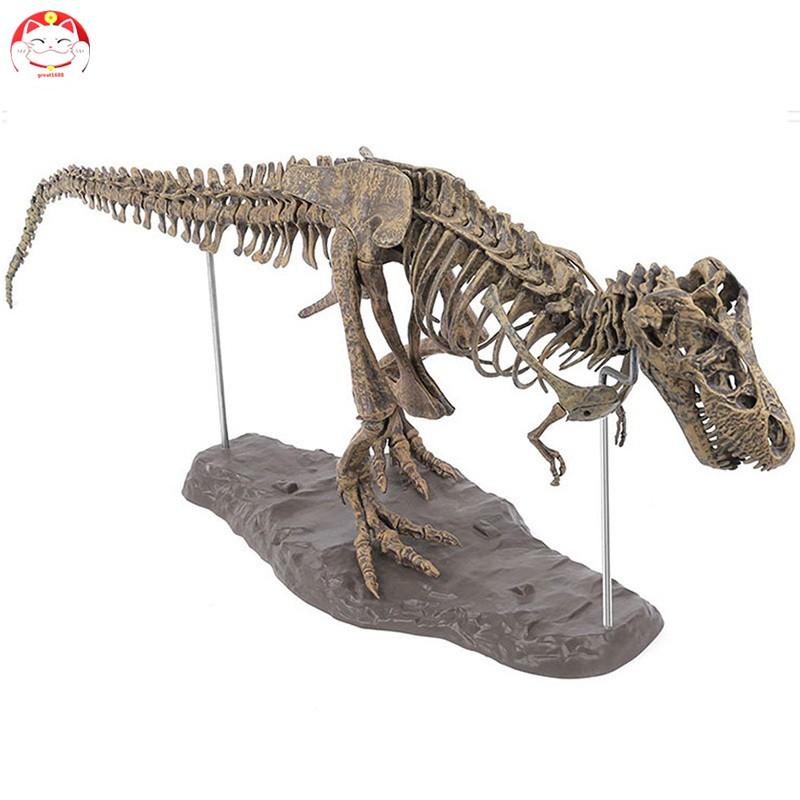 Gt Tyrannosaurus Rex Skeleton Dinosaur Animal Collector Decor