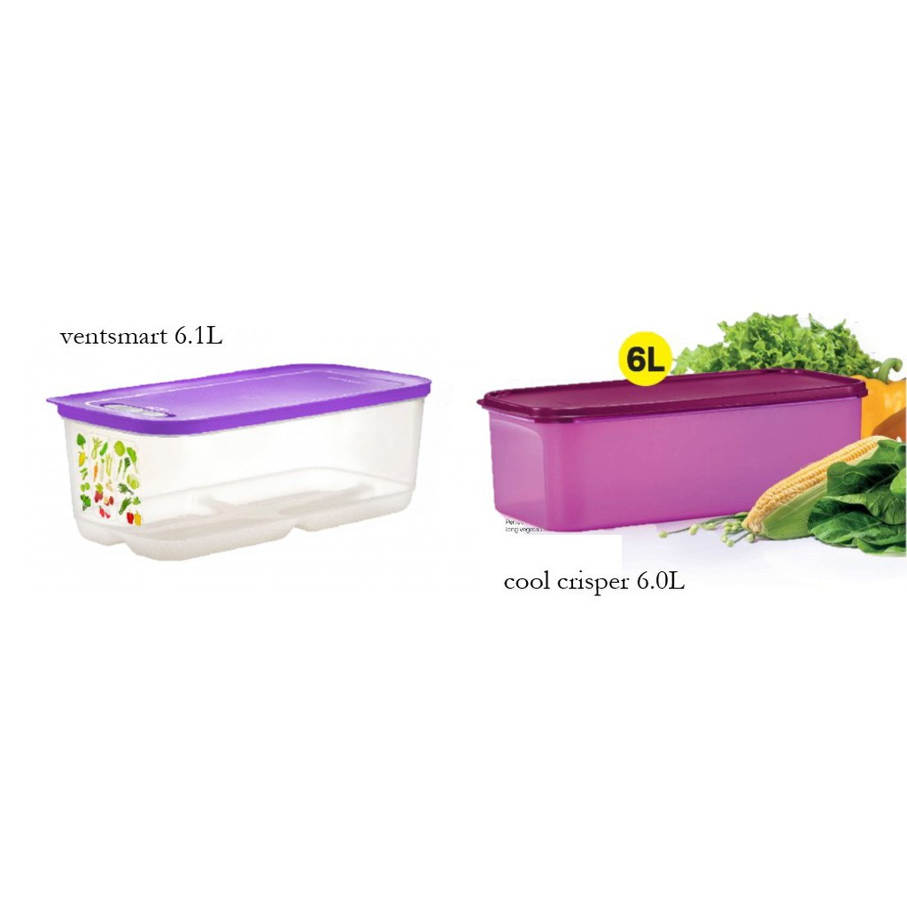 Tupperware Fresh Vegetables Container Ventsmart Cool Crisper