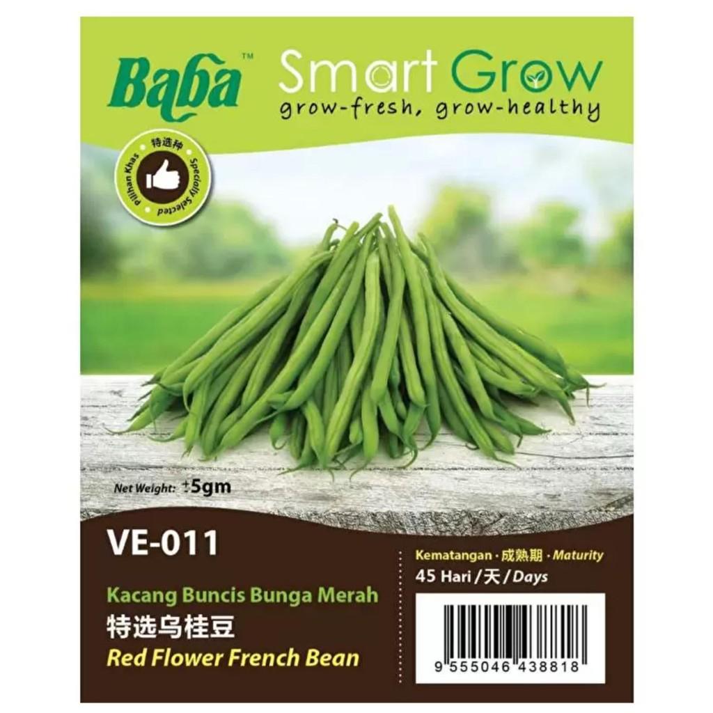 [IGL] BABA SMART GROW SEEDS / BIJI BENIH / VE-011 KACANG BUNCIS @ FRENCH BEAN