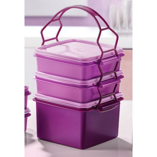 Tupperware Triffin Delight Set with cariolier / Double Deep 1.7L / Small Goody Box 790ml /