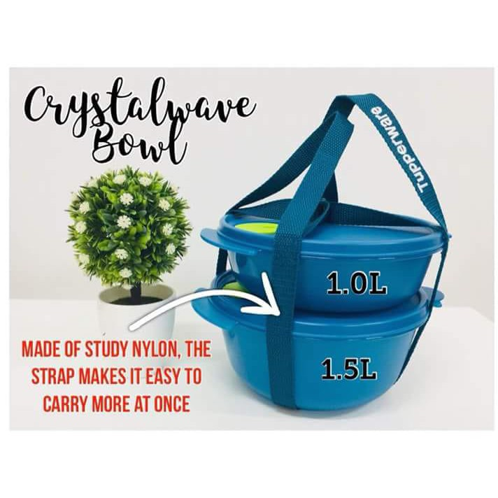 Tupperware Microwavable CrystalWave Bowl with Holdall Strap
