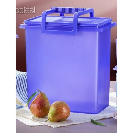 TUPPERWARE BUDDY KEEPER 10L with Handle (1)
