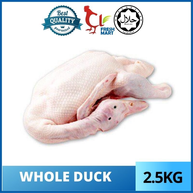 Daging Itik / Whole Duck  2.5kg