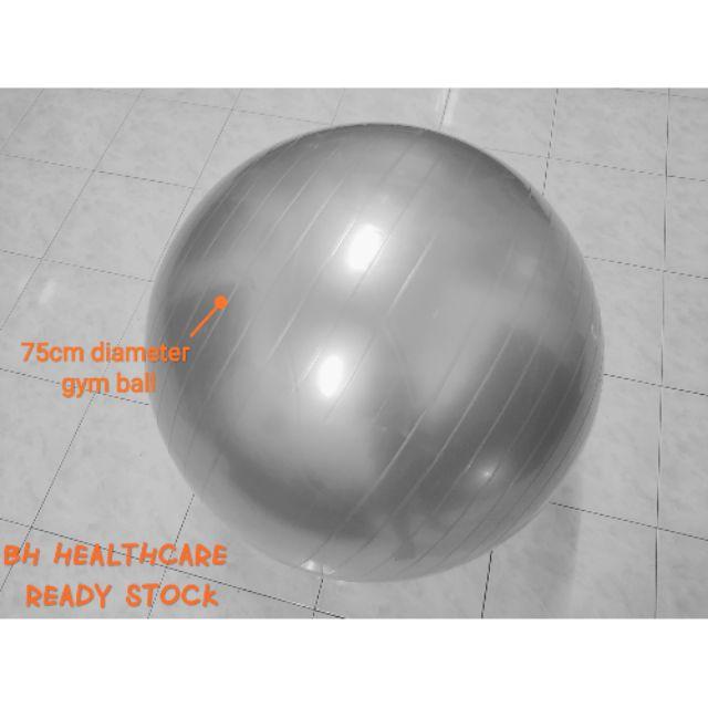[READY STOCK]75CM Gym Ball/Exercise Gym Ball/Exercise Ball/Fitness Exercise Ball/Exercise Training FitnessBall/Yoga Ball