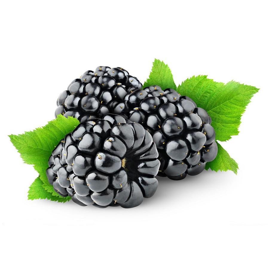 Mulberry Fruit Tea:Beauty 桑椹果养生茶:美容养颜