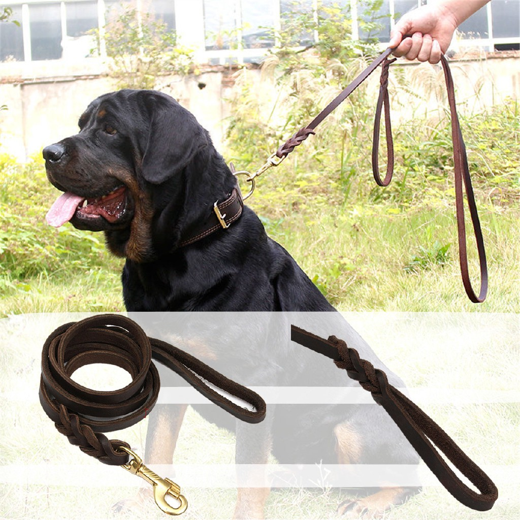 Braided Leather Walking Training Lead Leash Belt Rope for Medium /& Large Pet Dog