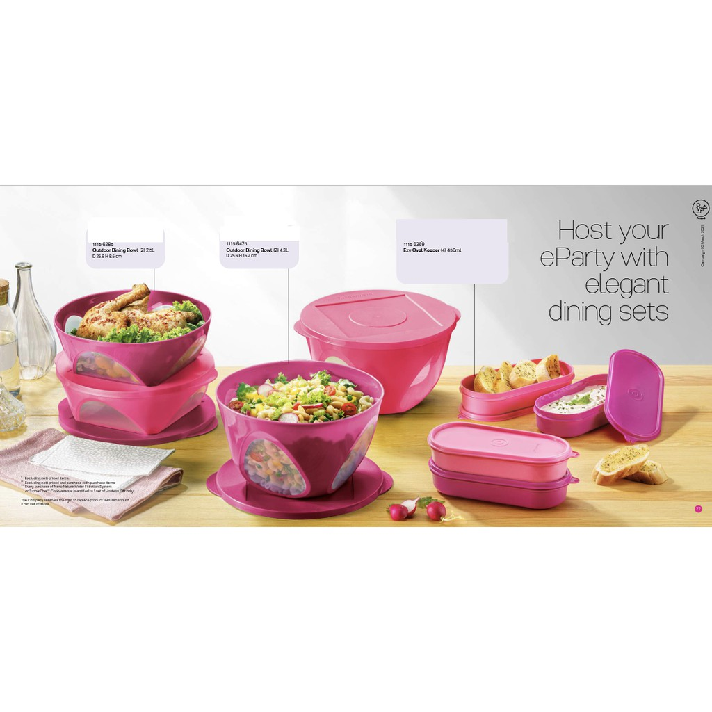 Tupperware Outdoor Dining Bowl Set