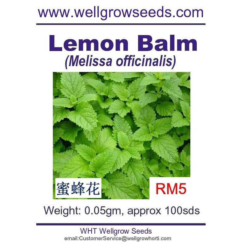 Get This Report on How Many Lemon Balm Seeds To Plant