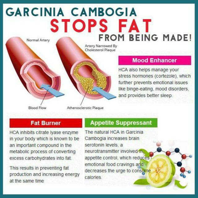 Promo Buy 1 Free 1 Sweet Garden Garcinia Shopee Malaysia