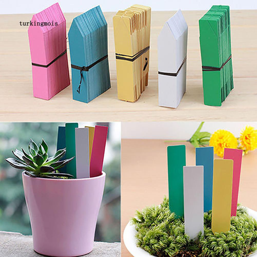 Tree-on-Life 100PCS Plastic Waterproof Hanging Tags with String Line Gardening Labels For Pot Vegetable Herbs Flower Seedling Planting Tray