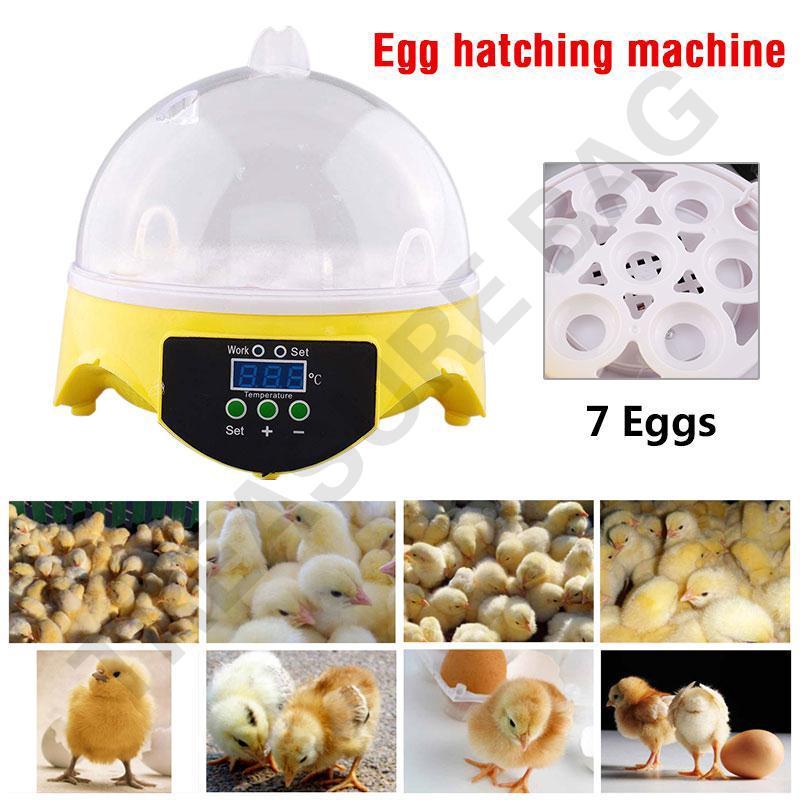 7 Egg Hatcher Digital Duck Poultry Temperature Control Automatic Mini  Incubator