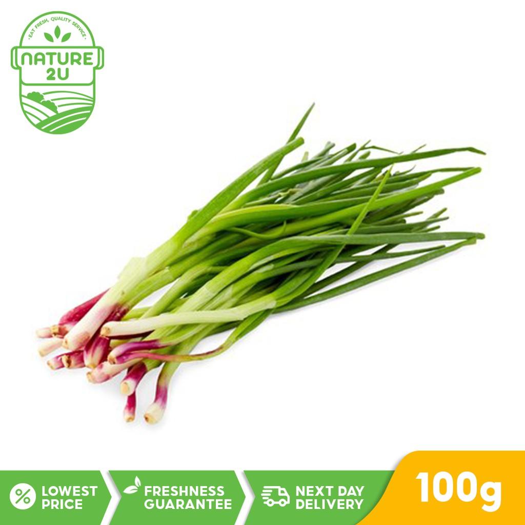 Fresh Vegetable - Spring Onion (100G)