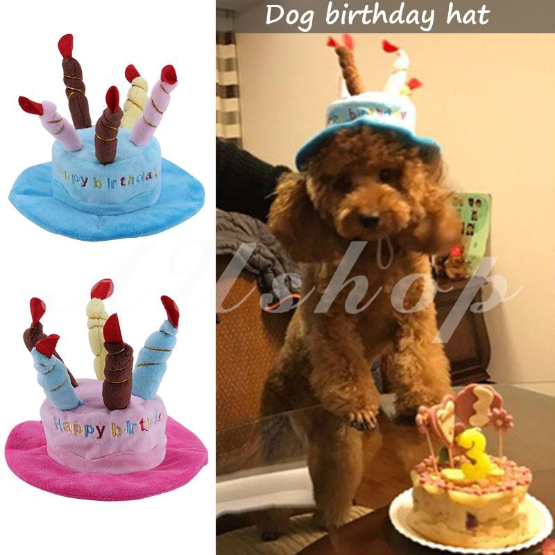 Happy First Birthday Party Hats Decor Cap One Year Old Number Dogs Pet