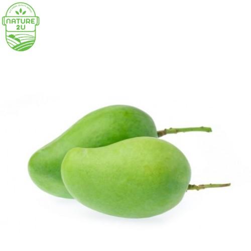 Mango Green (600G+-/PKT)