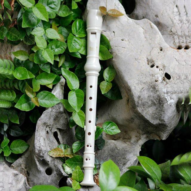 MALAYSIA Ready Stock Recorder Clarinet Flute