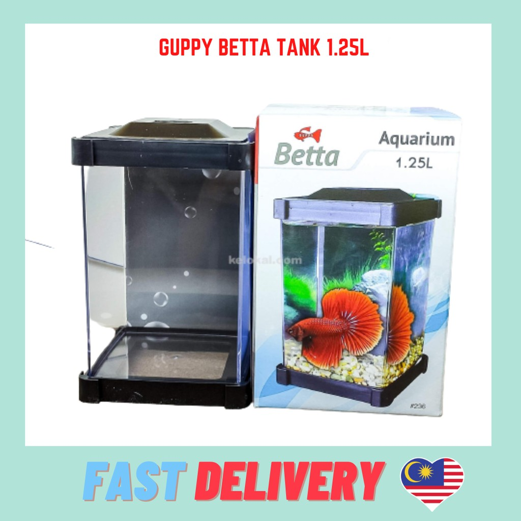 GUPPY Beta Fish Tanks Aquarium - 1.25L ( 10cm x 10cm x 18cm )