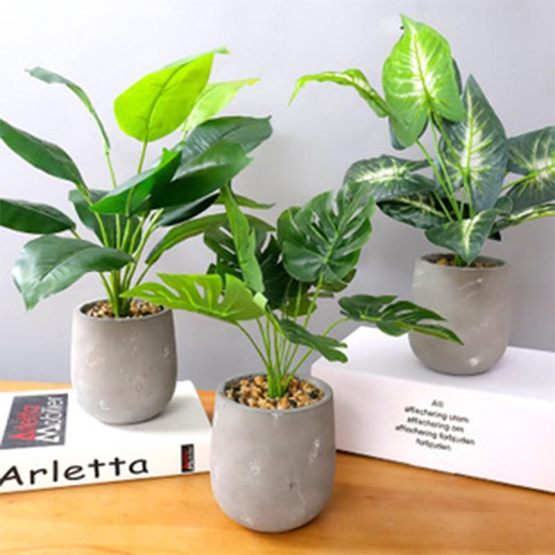 Artificial Mostera Plant 33cm pokok artifical botanica