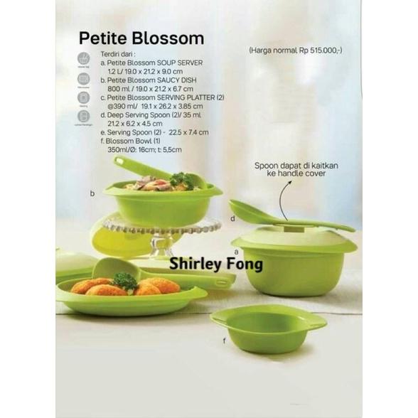 Tupperware PETIT Blossom Green Set (Clearance)