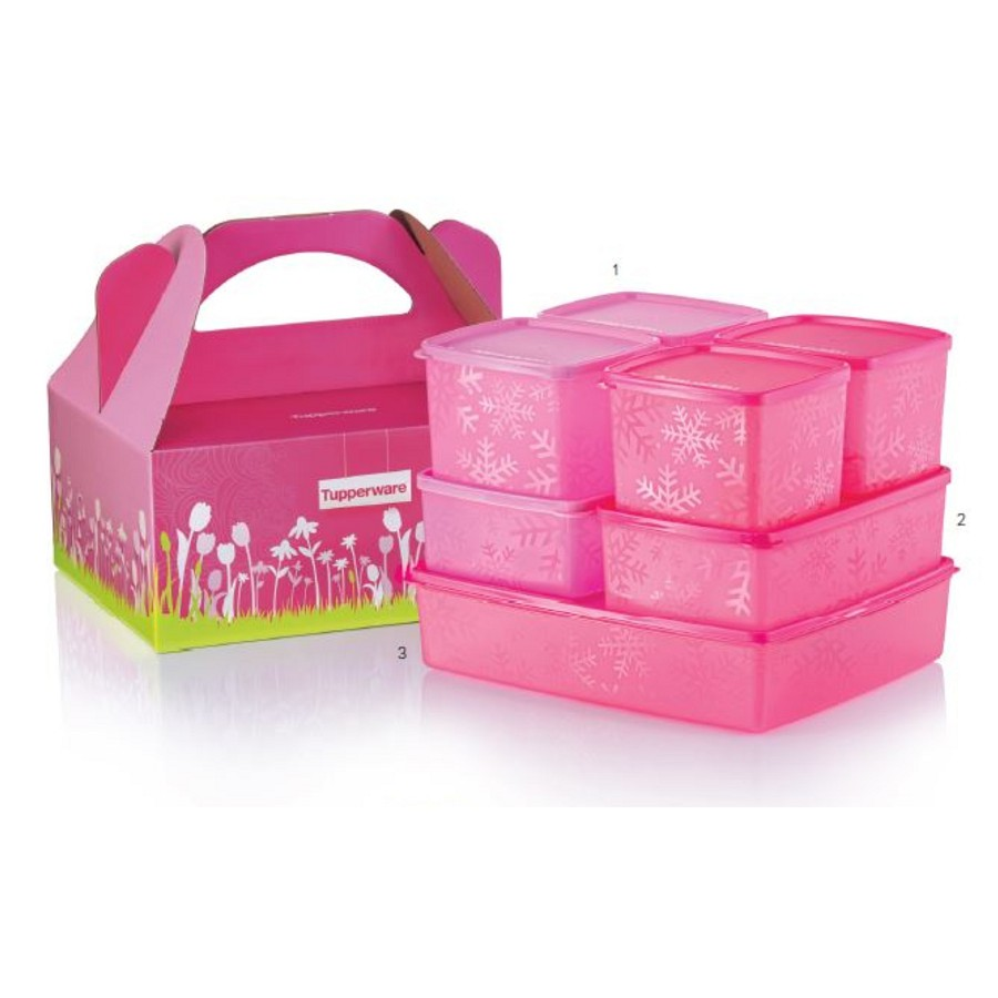 Tupperware Snowflake Set (with Gift Box)