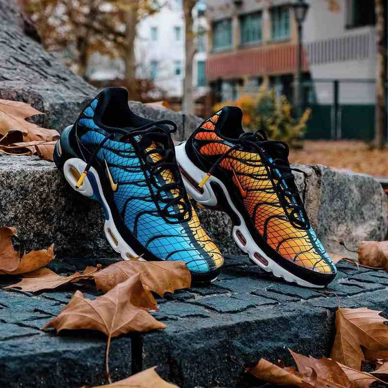 low price sale discount sale on feet at Nike Air Max TN Plus Greedy Men Sport Running Shoes 40-46   Shopee ...