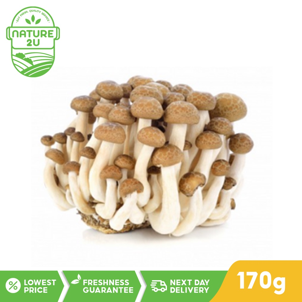 Fresh Vegetable - Shimeji Mushroom Brown (170G)