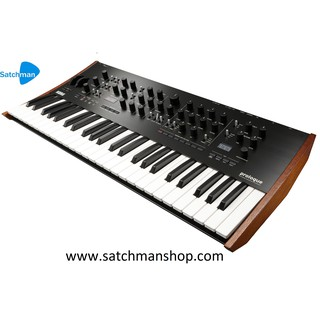 Korg PA600MY 61-Keys Arranger Keyboard with Malaysian Styles (PA-600 / PA  600) - FREE Headphone