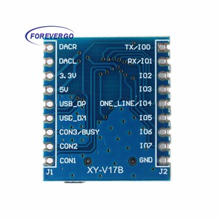 RE Voice Module MCU MP3 Audio IO Serial SD/Tf Control | Shopee Malaysia