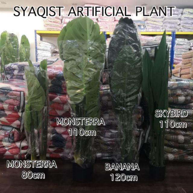 [PREMIUM] SYAQIST ARTIFICIAL PLANT . GRED PREMIUM A+ . DAUN TEBAL DAN NAMPAK SEPERTI POKOK ASLI