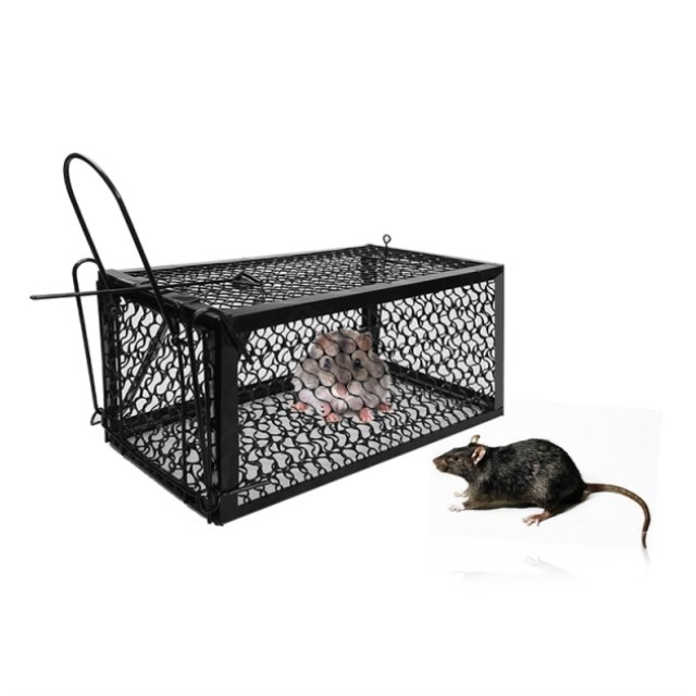 Image result for mice trap shopee