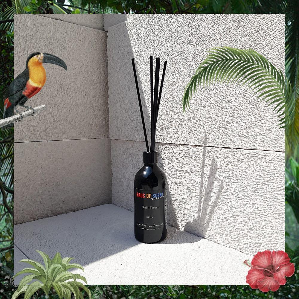 【1 แถม 1 】 ก้านไม้ หอมปรับอากาศ กลิ่น REED FREESIA  ก้านไม้หอม อโรม่า น้ำหอมปรับอากาศ  Reed Diffuser by haus of