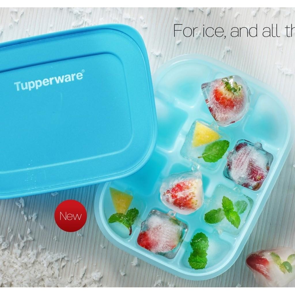 💜💜 Tupperware Chill Freeze Ice Tray Set of 2 or 4 Bekas Buat Ais 💜💜