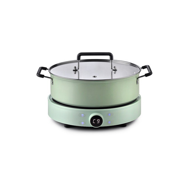 Online Exclusive Pensonic Induction Cooker |Free 3L Pot, Adjustable 9 Power Modes| PIC-2006X