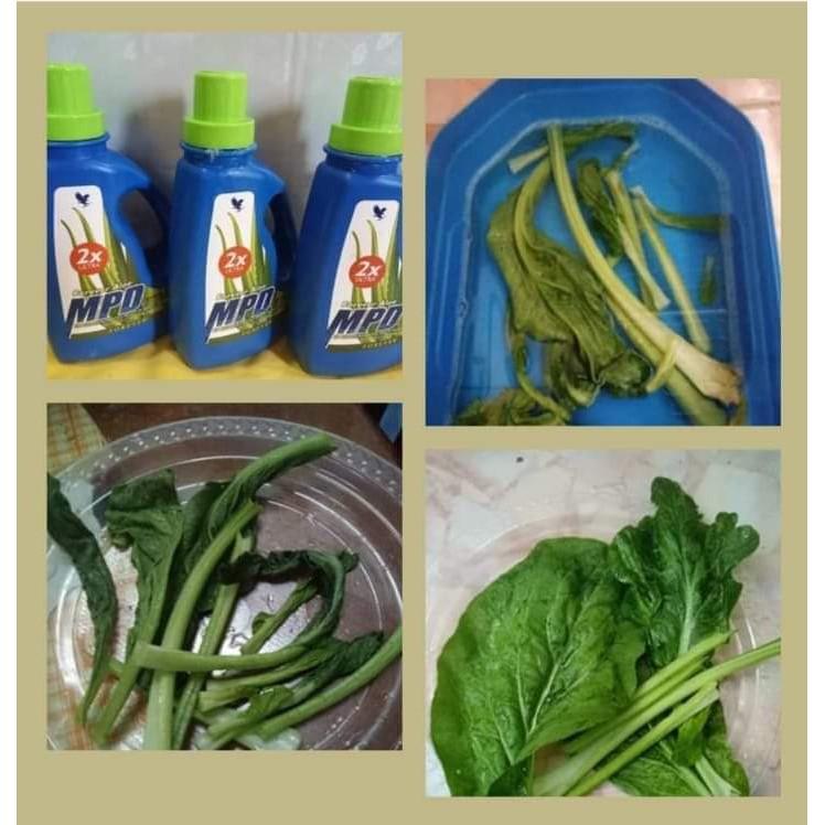 Pencuci Serbaguna Liquid Detergent Multipurpose Cleaner Laundry Liquid MPD : Forever Aloe MPD 2x Ultra Detergant 👍👍👍