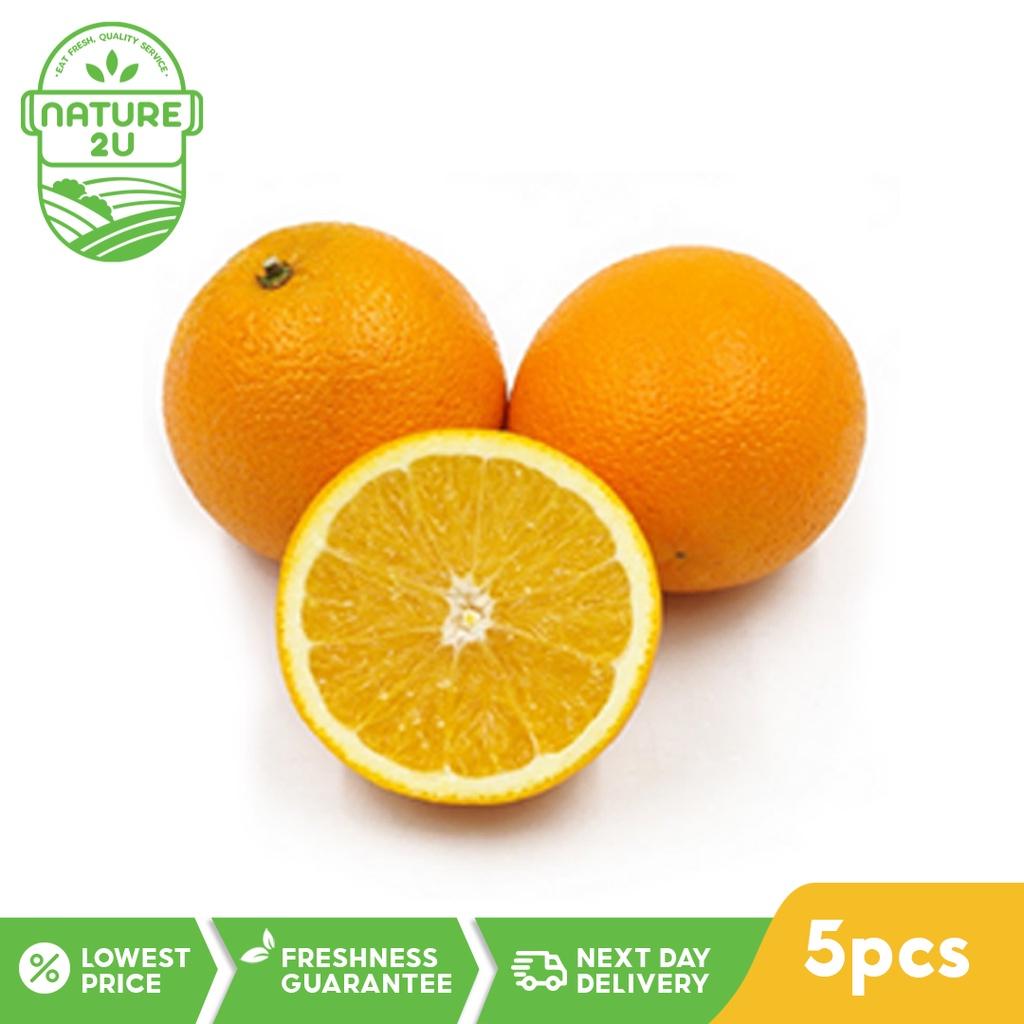 Fresh Fruit - Sunkist Orange (5PCS)