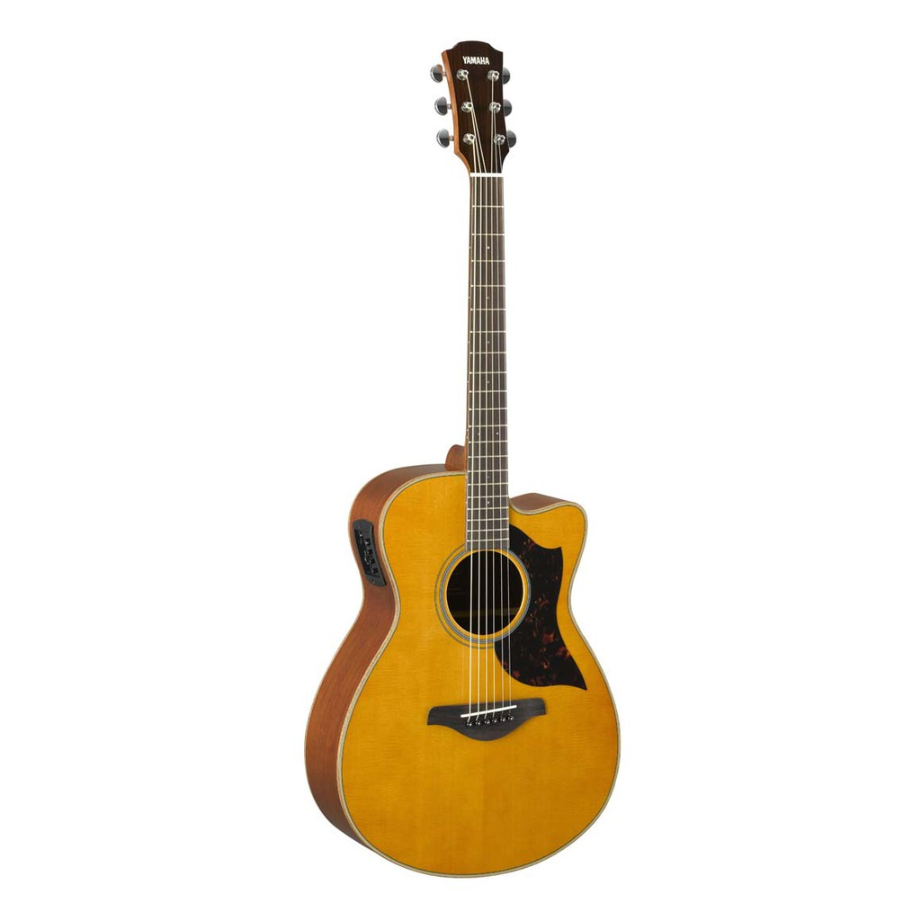 Yamaha AC1M 40 Concert Cutaway Solid Sitka Spruce Top Acoustic Electric Guitar
