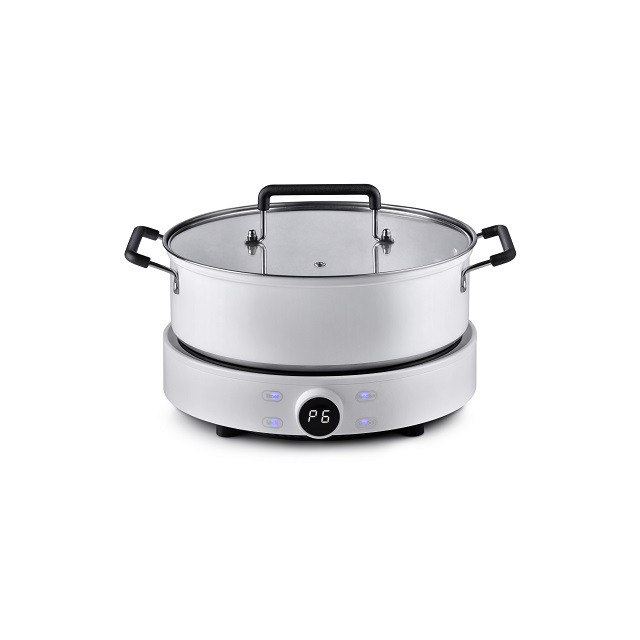 Online Exclusive Pensonic Induction Cooker |Free 3L Pot, Adjustable 9 Power Modes| PIC-2005X