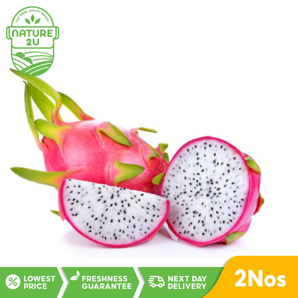 Fresh Fruit - Dragon Fruit White (2NOS/PKT)