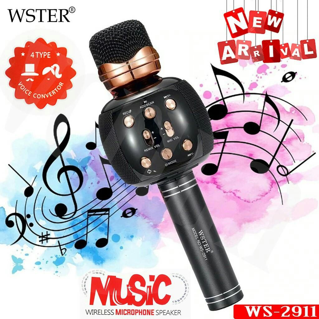WSTER WS-2911 KARAOKE KTV MIC PORTABLE BLUETOOTH HIFI SPEAKER MICRO PHONE/MAGIE VOICE/FM RADIO/RECORD SONG