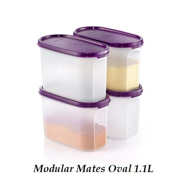 Tupperware Modular Mates Oval 1.1L Set (4pcs) Bekas Rempah BPA Free Platic Spice Storage Container