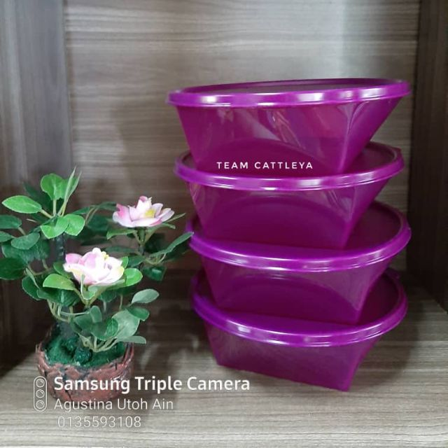 [Ready stock] Outdoor Dining bowl [original Tupperware] (1pcs)