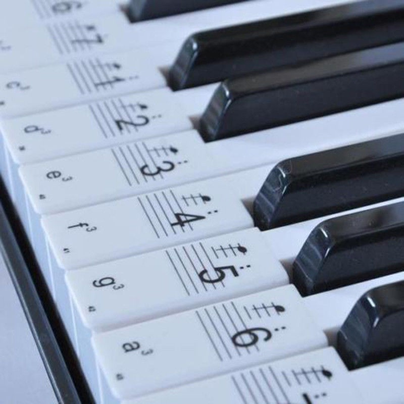 Music Keyboard Piano Sticker 37 49 61 88 Key Play Faster Beginner Learning  Decal