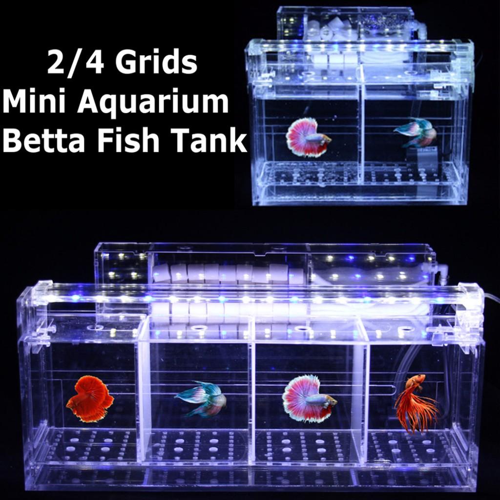 Led Acrylic Betta Fish Tank Mini Desktop Aquarium Water Pump Filter Box Shopee Malaysia