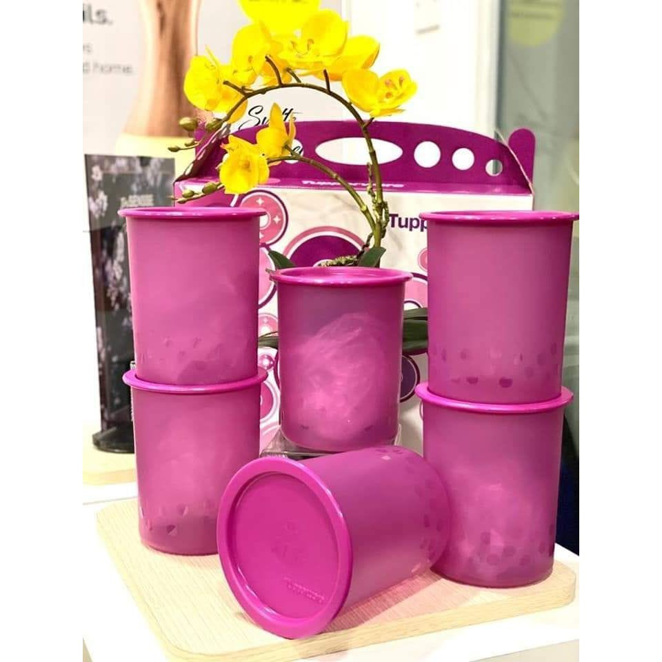 Tupperware Camellia One Touch Gift Set (6) 1.25L