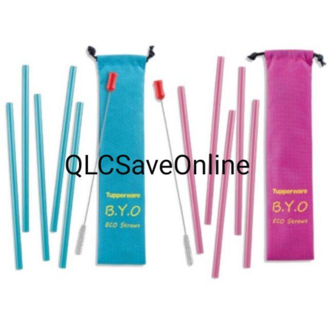 Tupperware Go Eco Straw & Brush Set / Reuseable Straw (1)