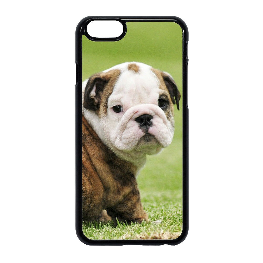 Adorable Dog English Bulldog 1 Phone Hard Case Cover for Iphone 5 6 6s 7 8 Plus X XS MAX XR
