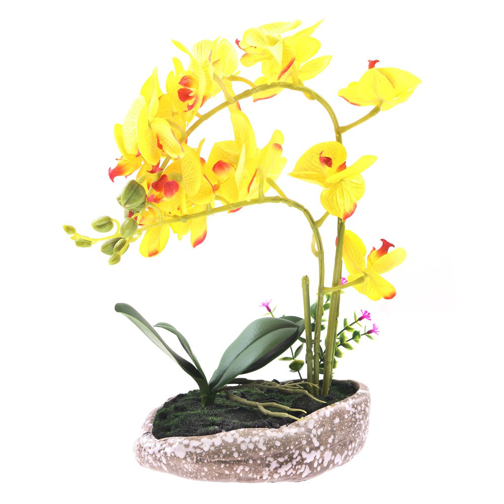 Artificial Flower with Stone Pots of Phalaenops HAF0006